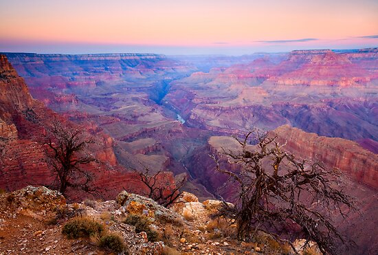 Grand Canyon Dawn by DawsonImages