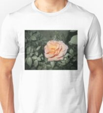 peach orange rose closeup 04/02/17 T-Shirt