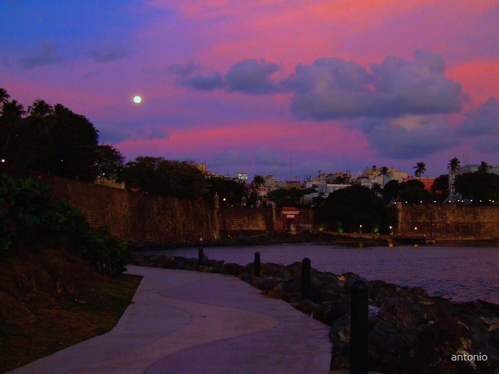 The Moon by antonio