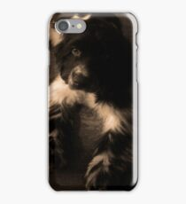 Cocker Spaniel iPhone Case/Skin