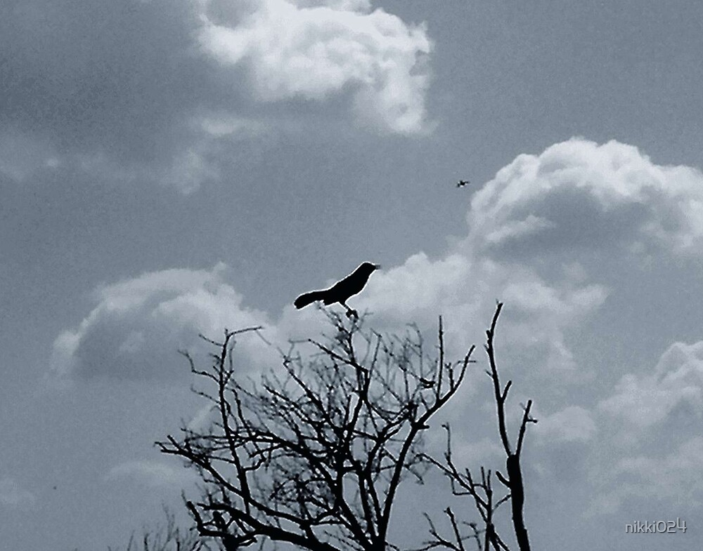 THE CROW by nikki024