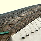 Keeping The Roof On..............................Ireland by Fara