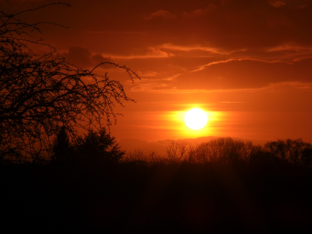 Sunset by Nick Mooney