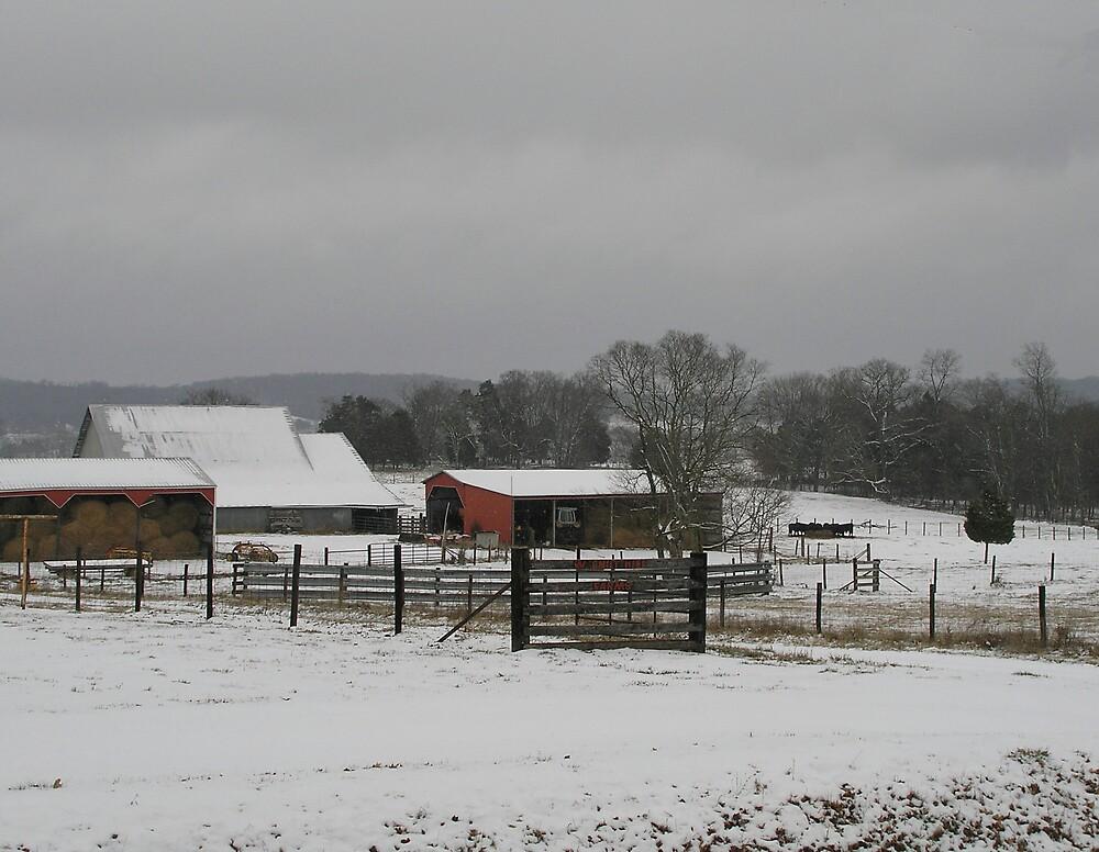 Winter Farm by C Hudgins