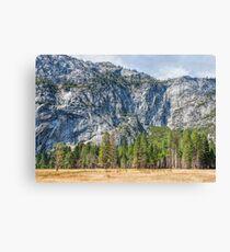 Yosemite Valley Wall Canvas Print
