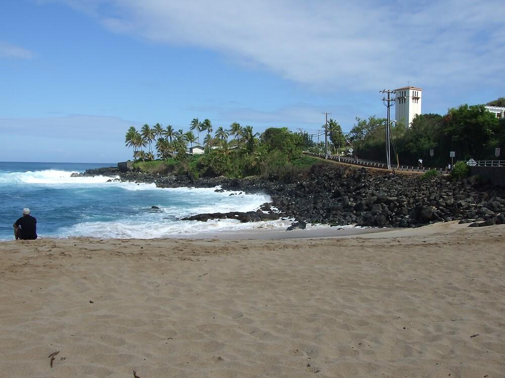Hawaii Beach 8 by Lainey Simon