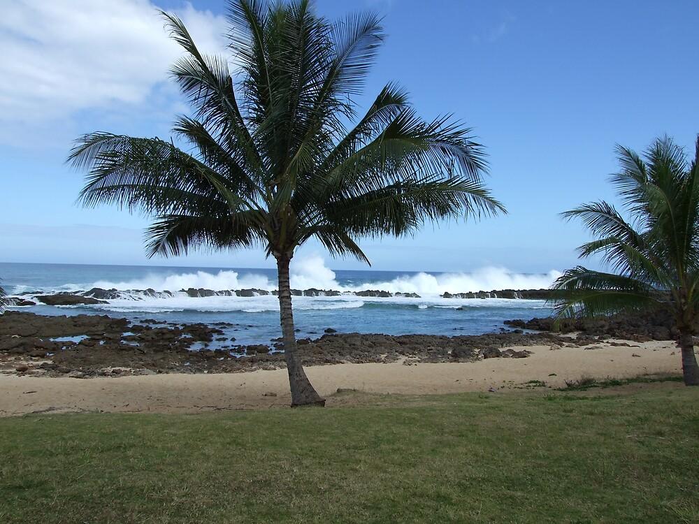 Hawaii Beach 10 by Lainey Simon