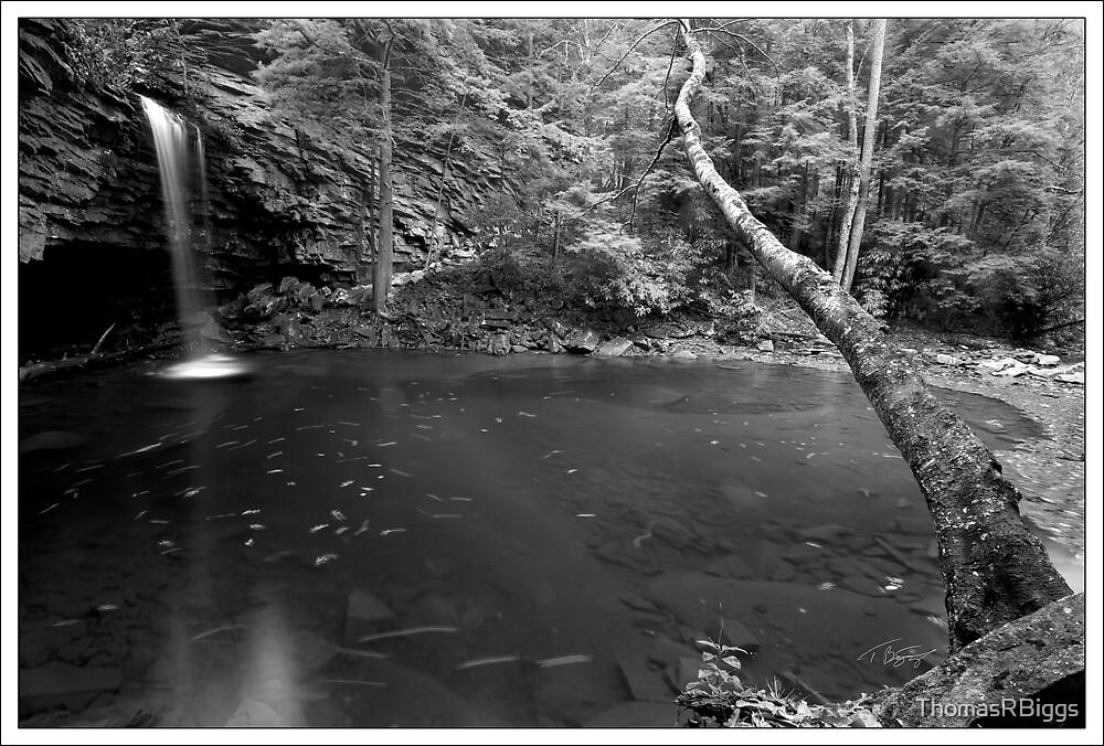 Little Stoney Falls B&W by ThomasRBiggs