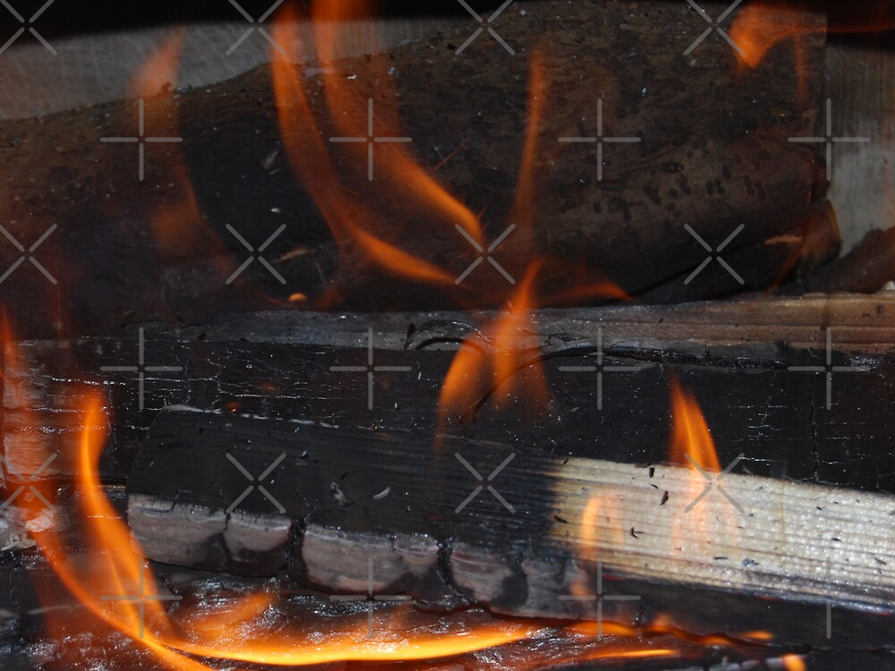 Burning Logs by Peter Green
