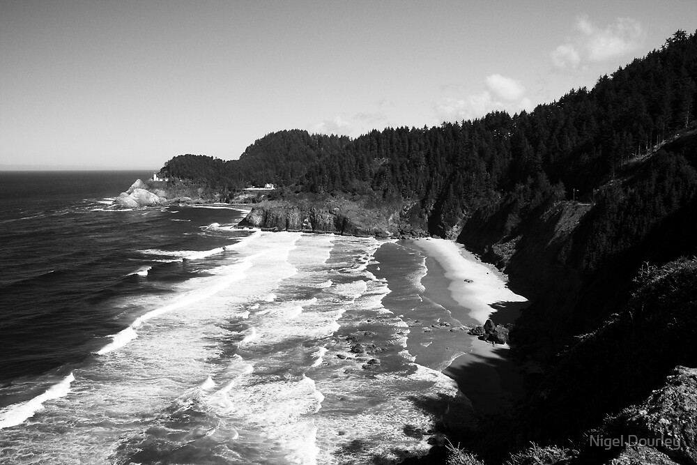 Oregon Coast by Nigel Dourley