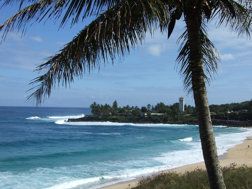 Hawaii Beach 14 by Lainey Simon