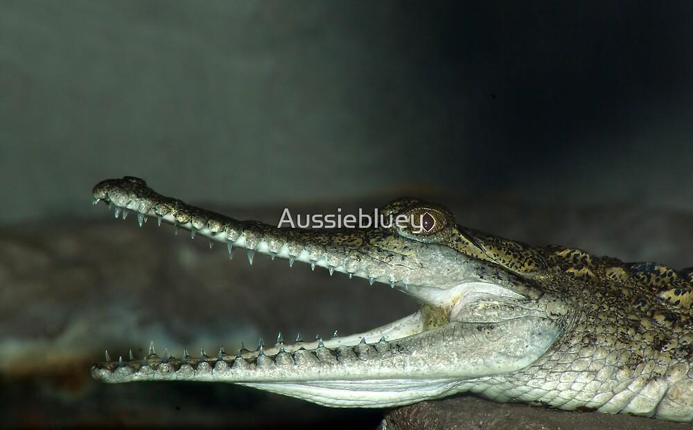Teeth by Aussiebluey
