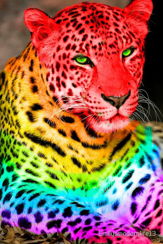 RainBow cheetah by Emilysmodernlife13