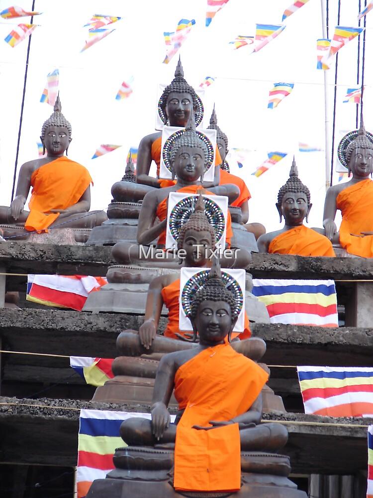 2552 Buddhas for Vesak by Marie Tixier