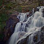 «WATKIN WATERFALL» de NICK COBURN PHILLIPS