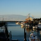 Ocean Springs Harbor by Jonicool