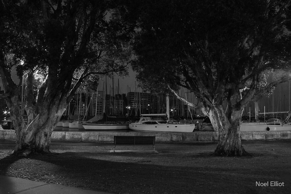 Rushcutters Bay #2 by Noel Elliot