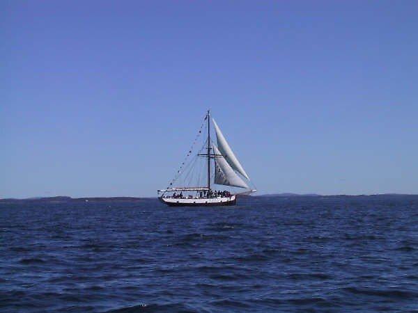Sail Away  by MellP9