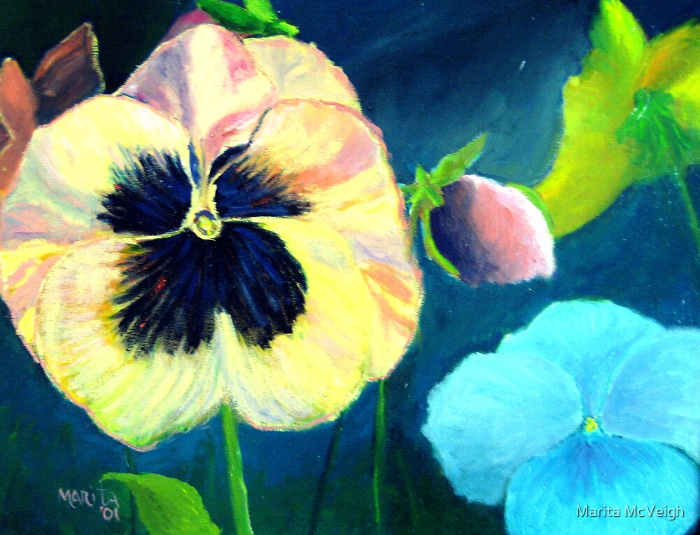 Pansy Parade by Marita McVeigh