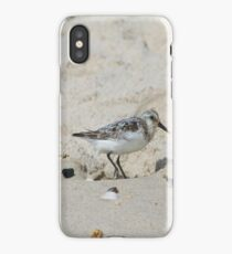 Baby Seagull on the Beach iPhone Case/Skin