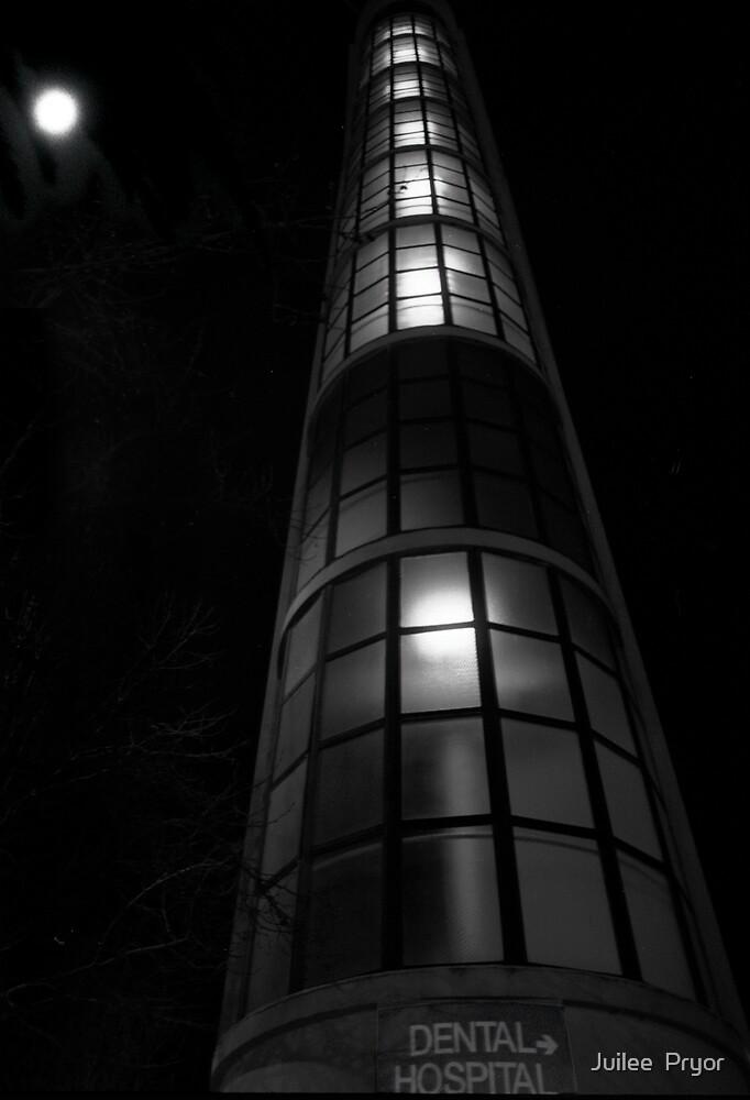 Urban Lanscape # 9 Sydney Dental Hospital by Juilee  Pryor