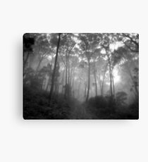Unfortuneately The Bread Crumb Trail Was Eaten By Crows. Canvas Print