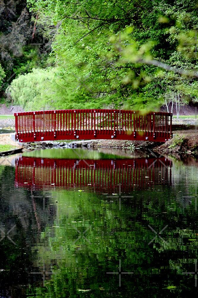 The Bridge by Varinia   - Globalphotos