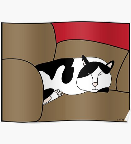 Sleeping Black and White Cat Poster