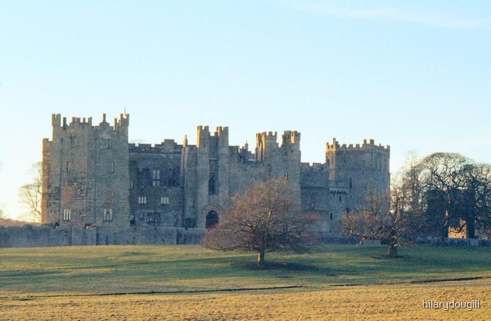 Raby castle by hilarydougill