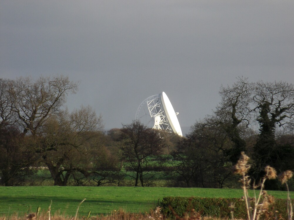 Jodrell Bank  by Nick Mooney