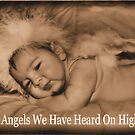 Angels We Have Heard On High by photomama4