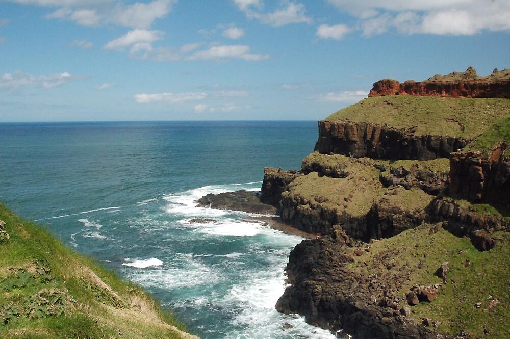 Irish Coast by Ted  van Eck