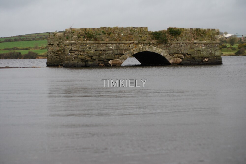 BRIDGE  TO NO WHERE by TIMKIELY