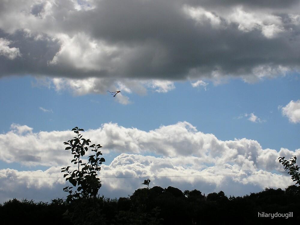 kite flying by hilarydougill
