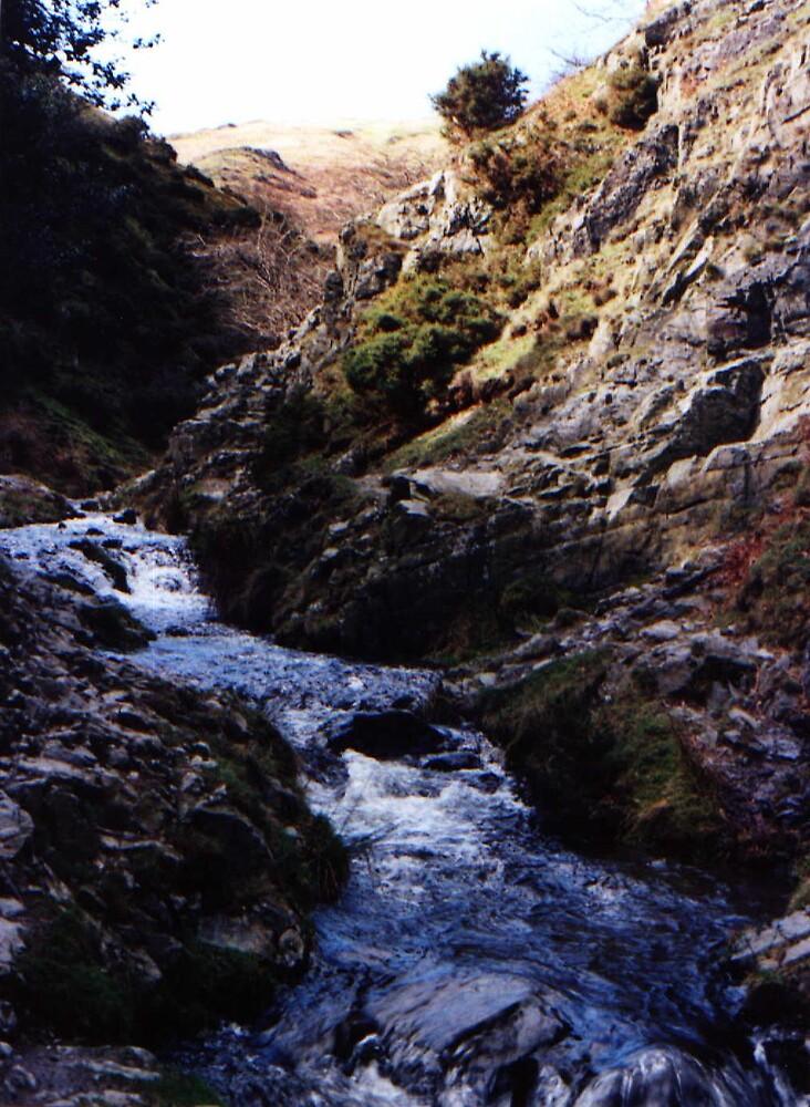 River.. by Rachel Harris