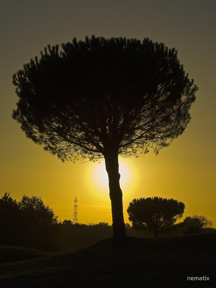 Silhouette by nematix