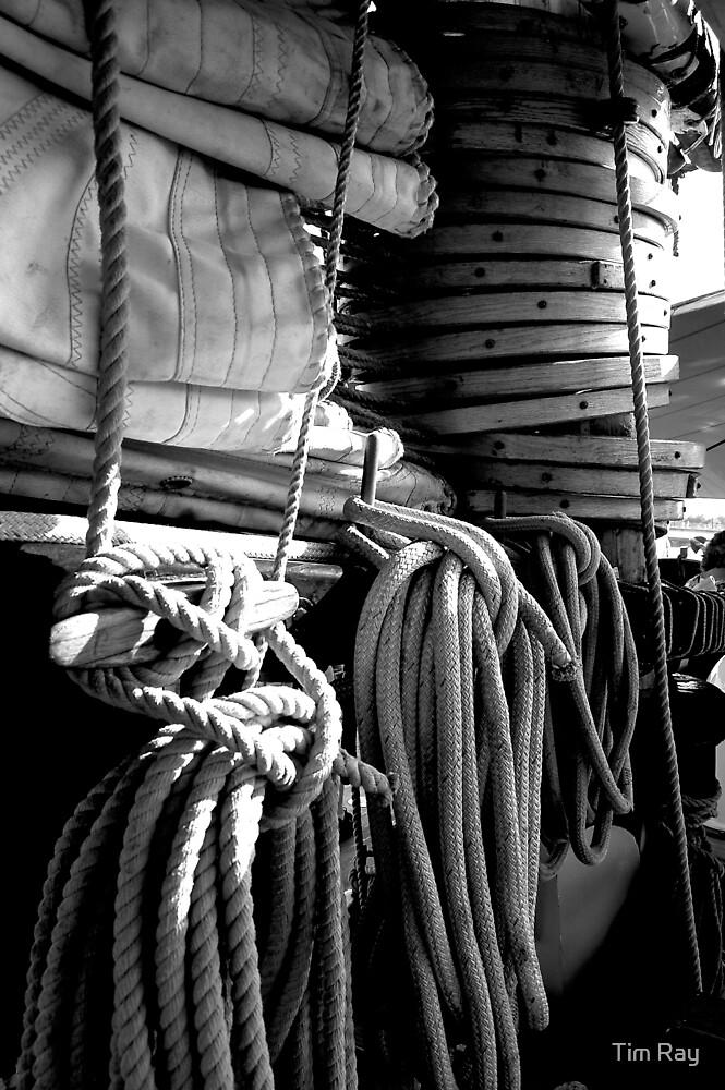 Sail Ropes by Tim Ray