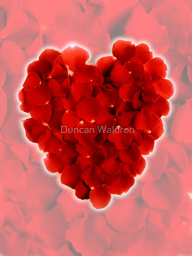 Rose petal heart 3 by Duncan Waldron