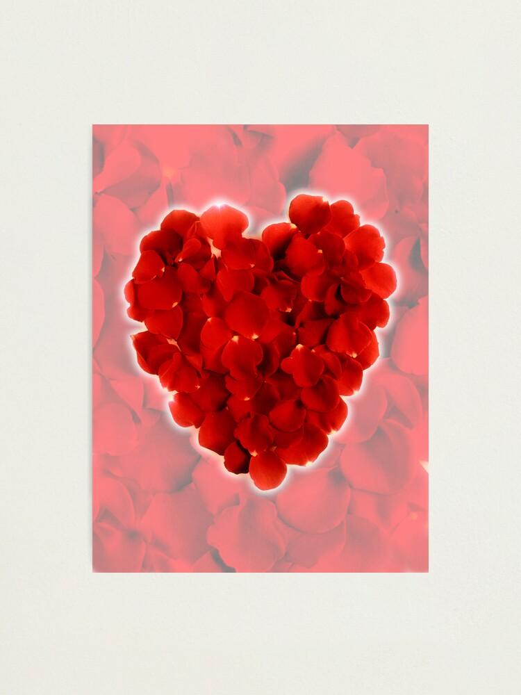 Alternate view of Rose petal heart 3 Photographic Print