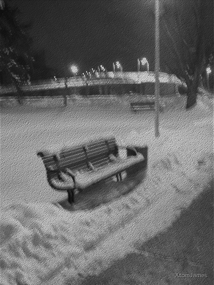 Cold Winter Bench by XtomJames