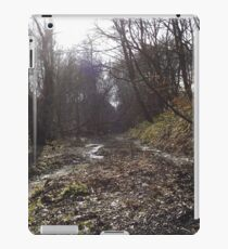 Tranquil woodland iPad Case/Skin