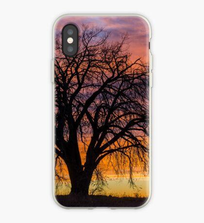 Cotton Wood Sunrise iPhone Case