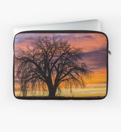 Cotton Wood Sunrise Laptop Sleeve