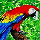 Crayon Parrot by William Burns