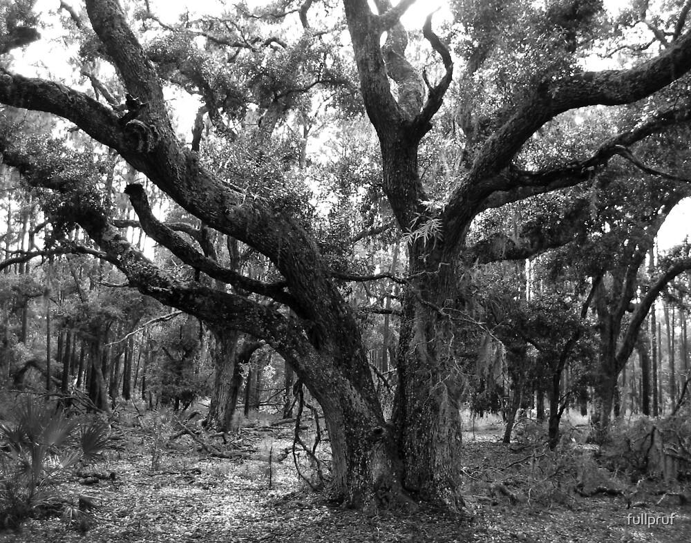 Tree 1 by fullpruf