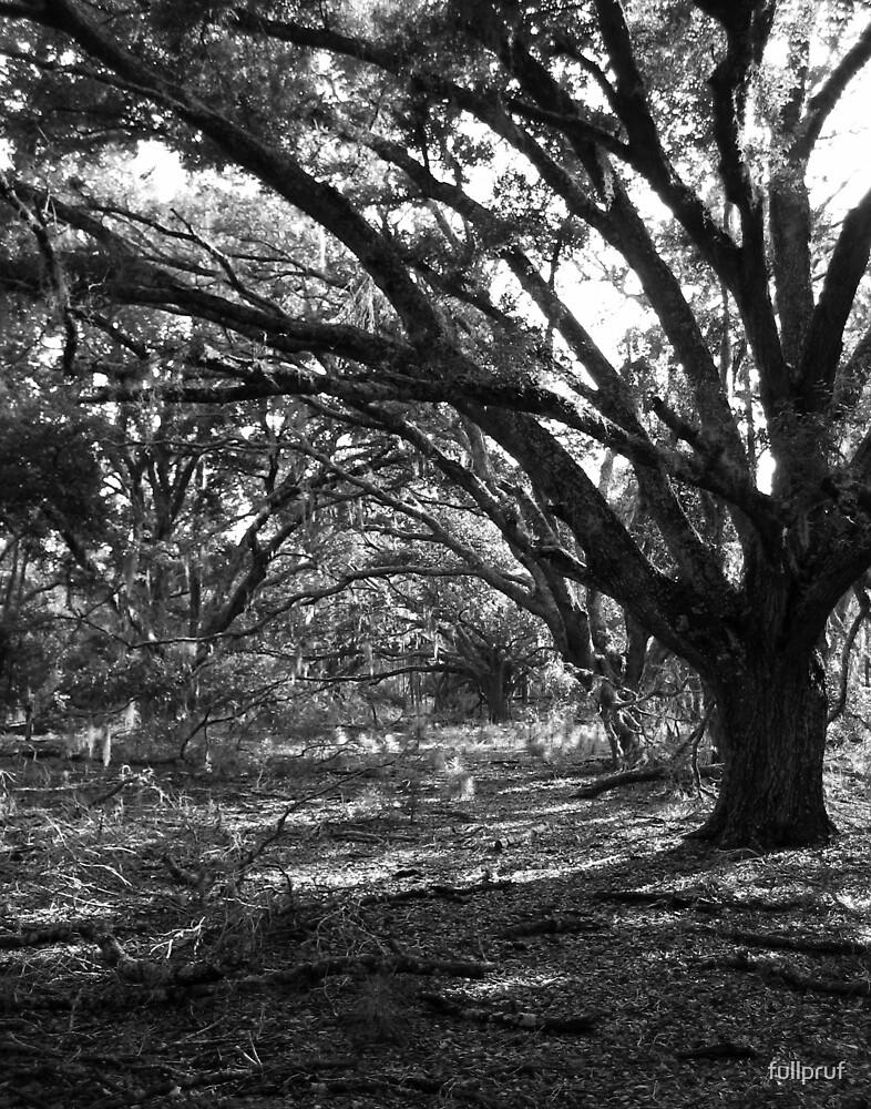 Tree 5 by fullpruf