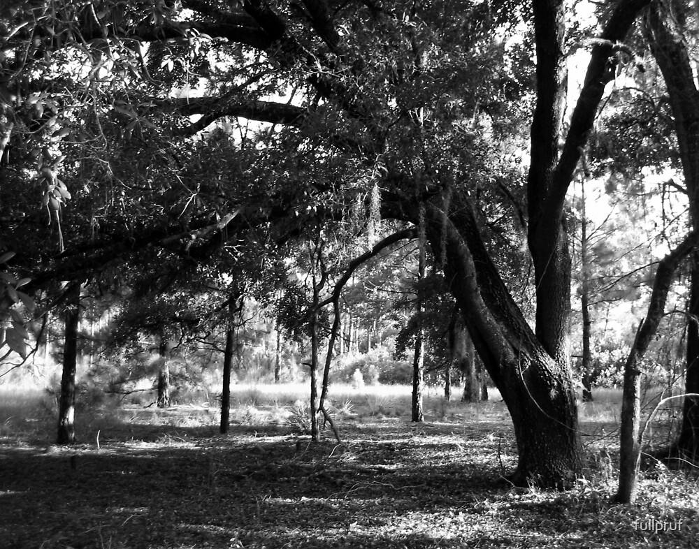 Tree 6 by fullpruf