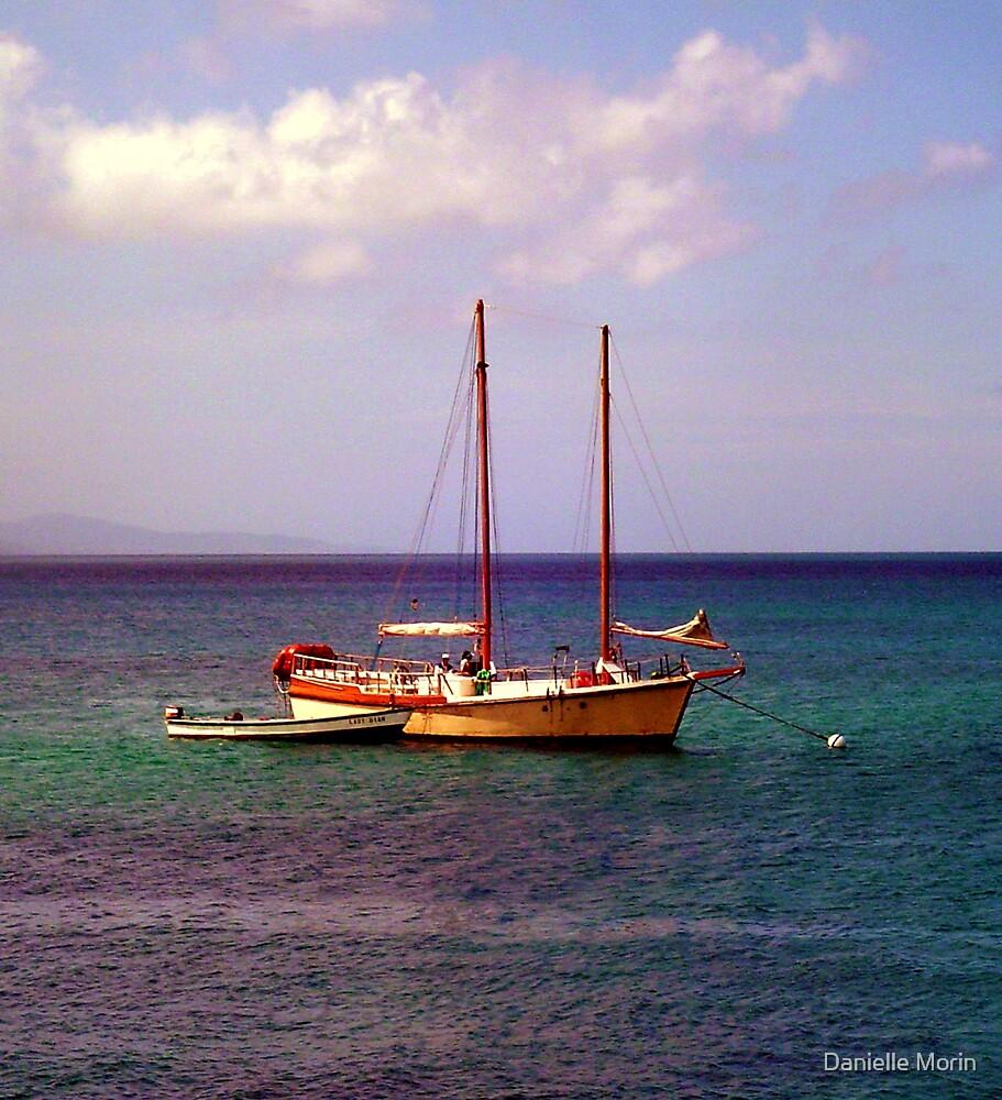 Cayman Pirates by Danielle Morin