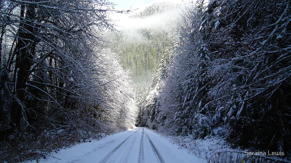 Frozen by Saraina Williams