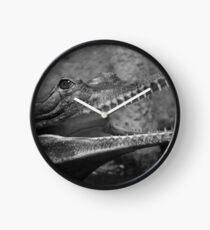 Black and white crocodile head Clock